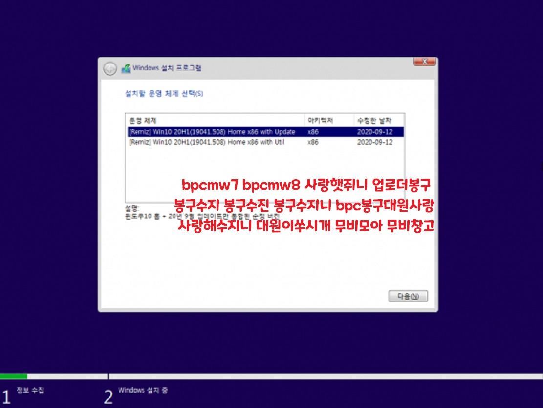 윈도 10 20H1 [19041.508] 홈 32비트
